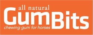 Gumbits-Logo-300x115